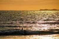 Whitesands Beach Cottages_1