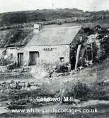 Historical Photos - Whitesands and St Davids Area_4